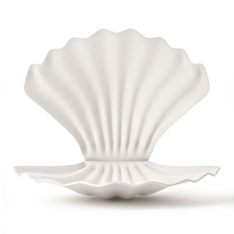 Seashell with pearl isolated on white background