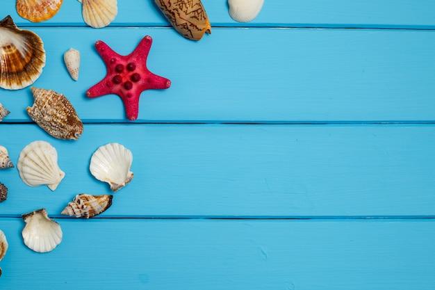 Seashell on wooden texture