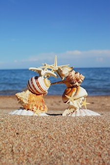 조개와 불가사리는 물 근처의 바다 해변에 아치로 지어졌습니다.