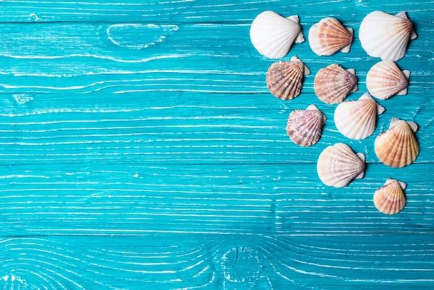 Seashells on blue wooden background
