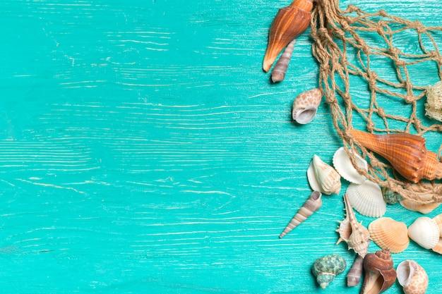 Seashells on blue wooden