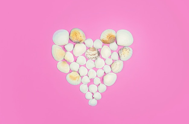 Seashells on a colored background heart shape made from sea shells high quality photo
