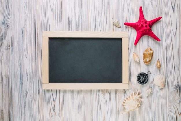 Seashells and compass near chalkboard