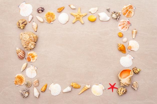 Seashells frame background, summer holidays concept