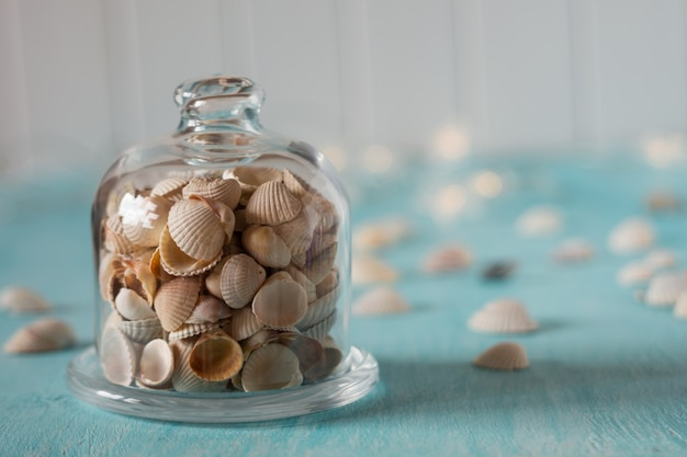 ガラスミニドームの貝殻。休暇についての思い出