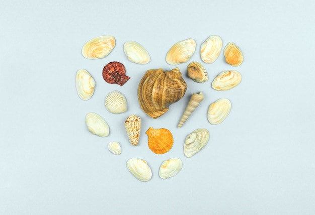 ハートフラットの形をした貝殻は、白い明るい背景に夏休みのコンセプトを置きました