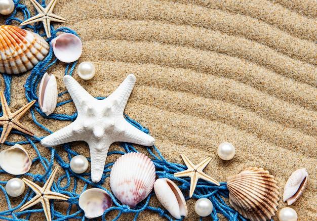 砂の上の貝殻。テキストのためのスペースを持つ海の夏の休暇の表面。上面図