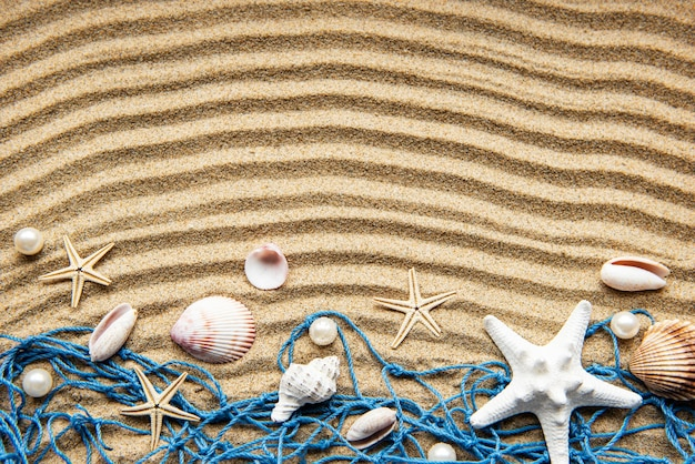 모래에 조개. 텍스트에 대 한 공간을 가진 바다 여름 휴가 테이블. 평면도