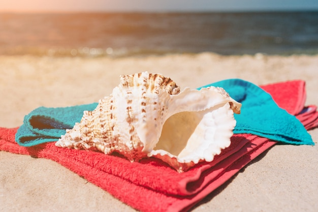 Seashells oncolorful towels on beach at sea shore. bright outside. paradise.