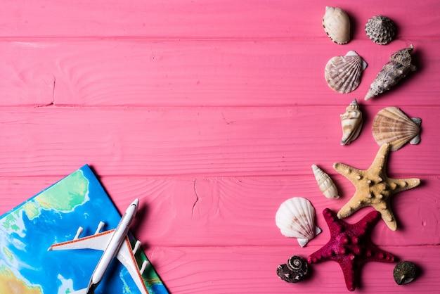 Seashells on pink wooden background