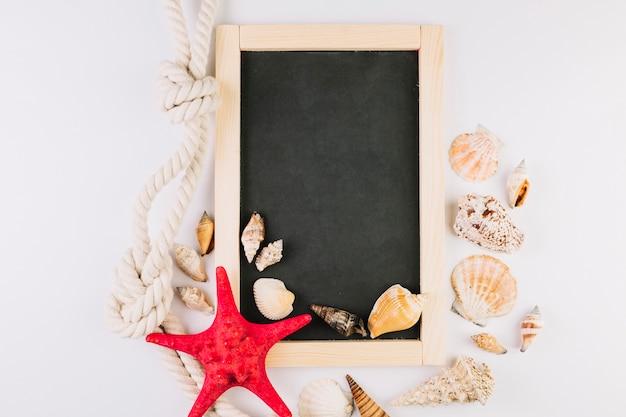 Seashells and rope around blackboard