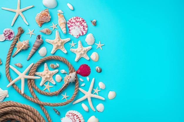 Ракушки, морские звезды и веревка на синем фоне