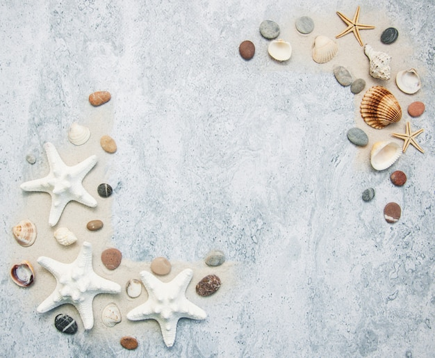 Seashells and starfish border