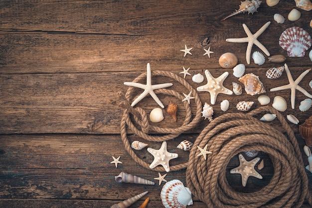 Ракушки, морские звезды различных типов и форм и веревка на коричневом деревянном фоне.