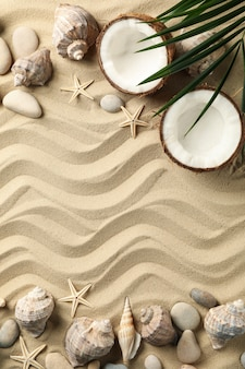 Seashells, starfishes, coconut and palm branch on sea sand, space for text