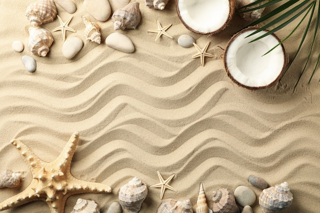 Seashells, stones, starfishes, coconut and palm branch on sea sand surface Premium Photo