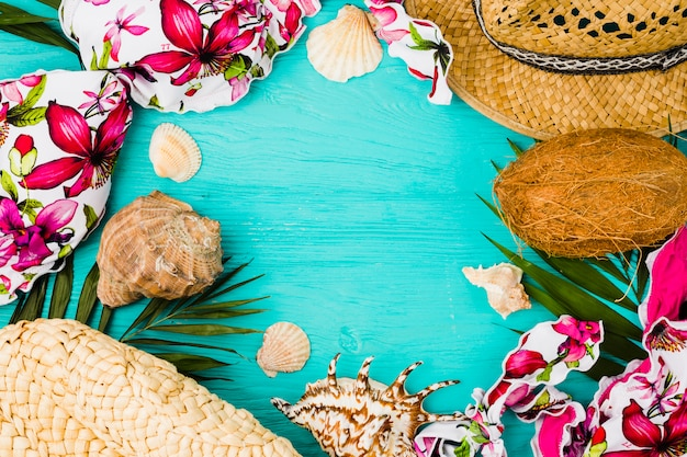 Seashells and swimsuit near plant leaves with hat and coconut