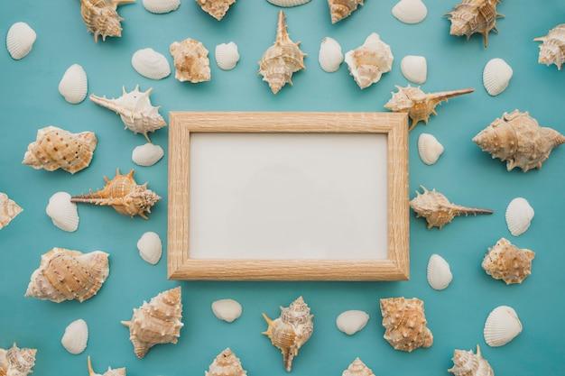 Seashells and white chalkboard