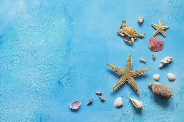 파란색 콘크리트 또는 돌 배경에 복사 공간이 있는 조개 바다 여름 휴가 배경