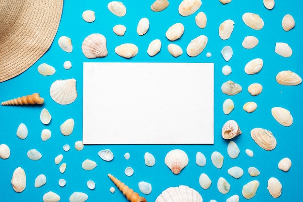 Seashells with copy space for text o