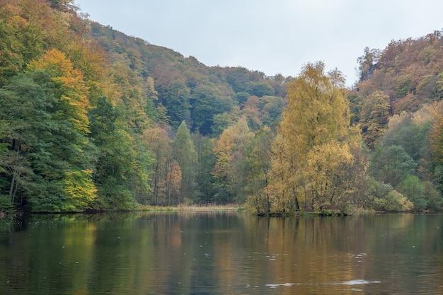 물 속에서 가을 색깔의 숲에서 해변과 반사