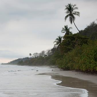 Seashore in costa rica