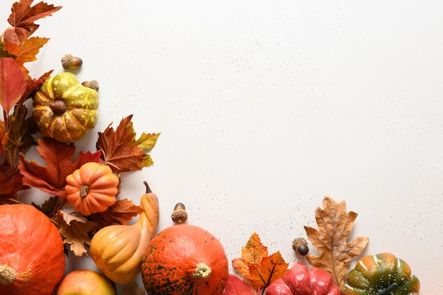 Seasonal frame from fall harvest, pumpkins, colorful leaves on white background with space for text. autumn composition. concept of halloween or thanksgiving day.