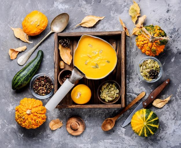 Seasonal pumpkin soup
