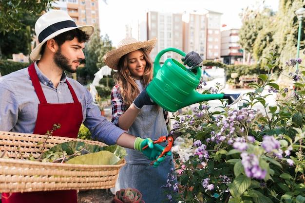 男性と女性の庭師が水をまき、secateursで花を刈り込む