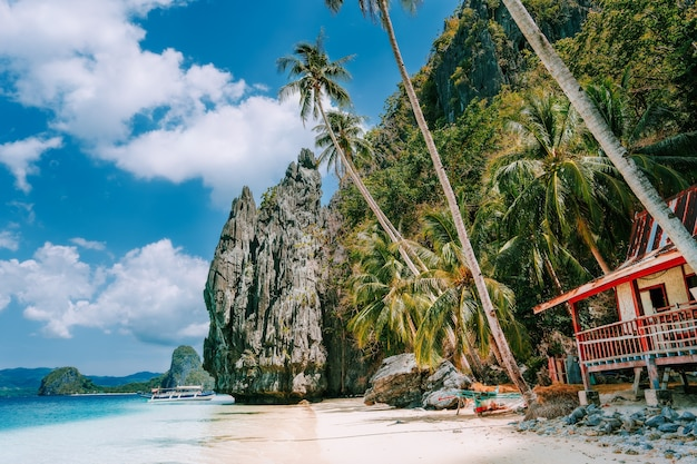 Secluded beach with hut udner palm trees on pinagbuyutan island, palawan, philippines