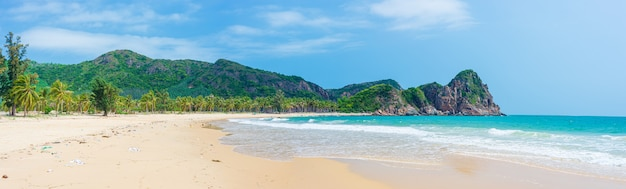 Secluded tropical beach turquoise transparent water palm trees, bai om undeveloped bay quy nhon vietnam central coast travel destination, desert white sand beach no people clear blue sky
