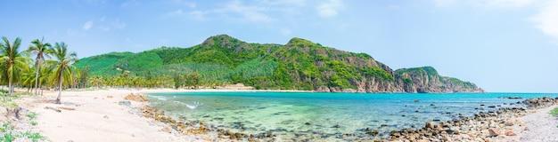 Уединенный тропический пляж, бирюзовая прозрачная вода, пальмы, неразвитая бухта бай ом. quy nhon. центральное побережье вьетнама, пустынный пляж с белым песком. Premium Фотографии