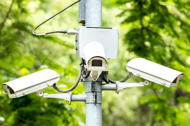 Security cctv three camera in the park on tree