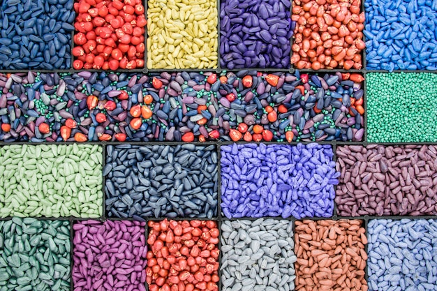 Seed sunflower seeds, corn, radishes. painted agro color for sorting and labeling