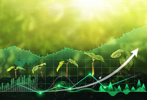 햇빛과 디지털 성장 그래프 글로벌 녹색 비즈니스와 함께 정원에서 묘목 성장 단계