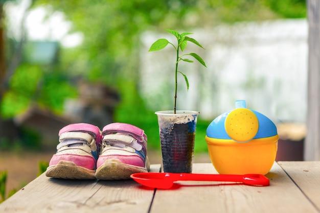 나무 판자에 봄에 정원에서 묘목과 어린이 원예 도구.