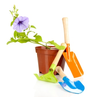 Саженцы и садовник инструменты на белом