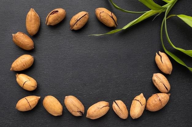 Cornice di semi con pianta e copia-spazio