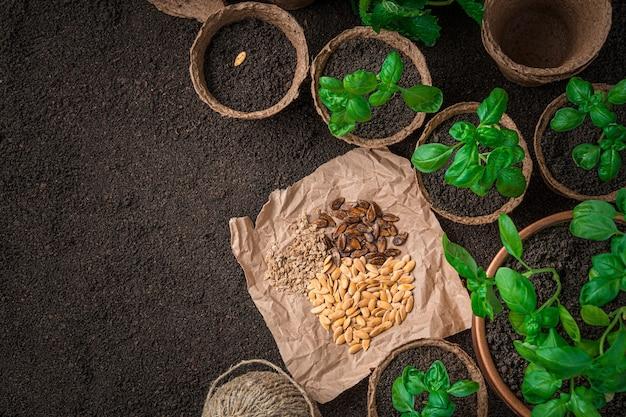 クラフト紙の種と地面の泥炭鉢の苗。栽培の概念。