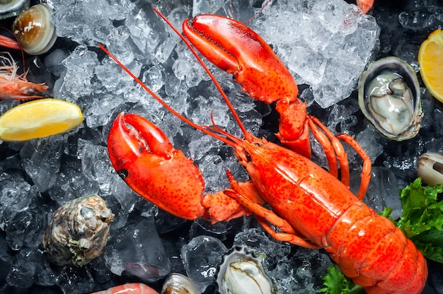 Selection of fresh lobster, shrimp, fish, oyster, squid and crab with lemon and ice cubes
