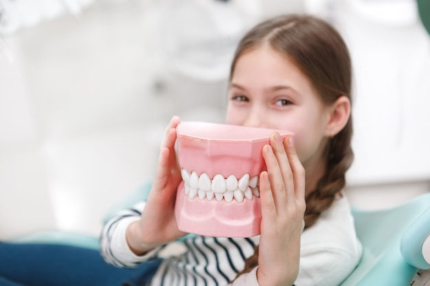 Selective focus on jaw model in hands of young girl
