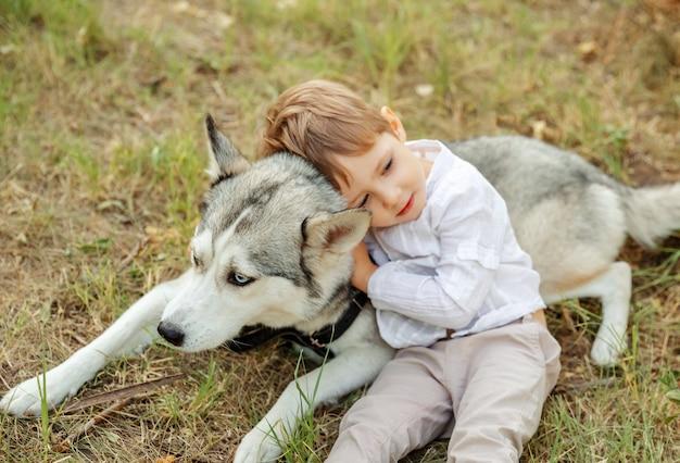 아름다운 강아지의 선택적 초점. 흐리게 작은 아이 쓰다듬어 개
