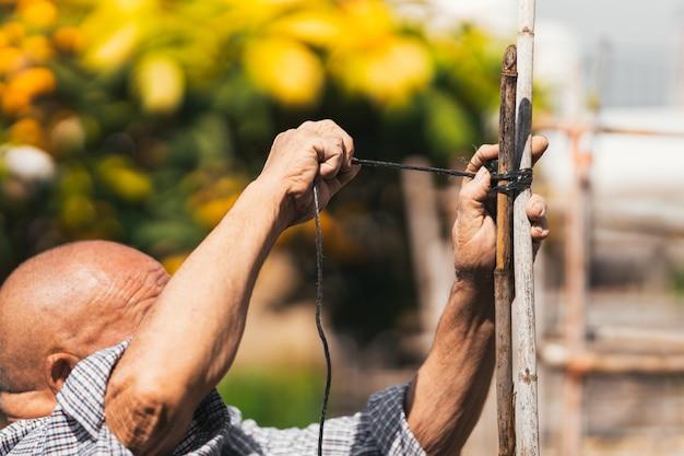 과수원의 나무 막대기 구조에 밧줄을 묶는 노인에 대한 선택적 초점
