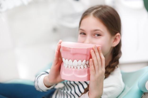 Выборочный фокус на модели челюсти в руках молодой девушки