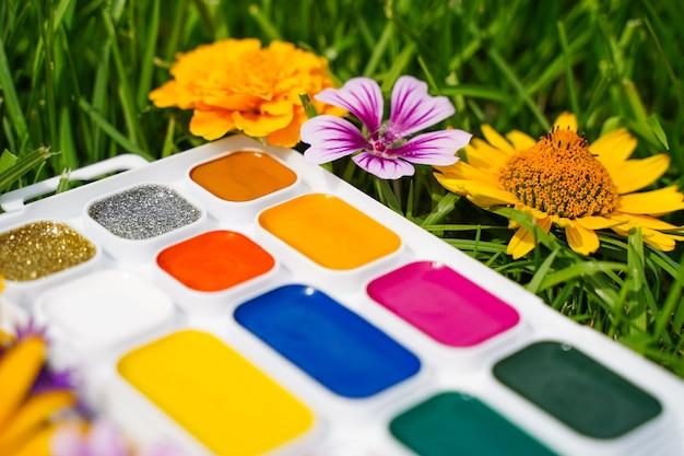 노란 꽃에 대한 선택적 초점은 푸른 풀과 푸른 풀의 배경에 열린 수채화 물감을 흐리게 합니다.