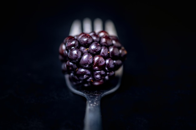 Selective focus shot of blackberry on top of the silver fork