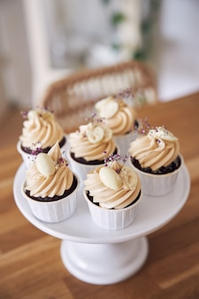 Selective focus shot of delicious chocolate cupcakes with white cream topping