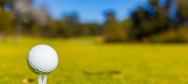 芝生に覆われたフィールドでのゴルフボールのセレクティブフォーカスショット