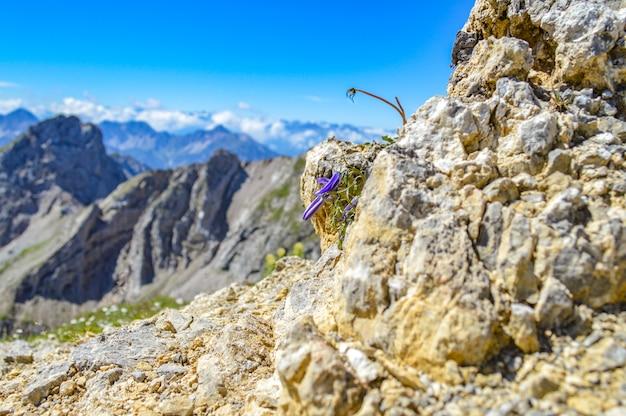 Селективный фокус скалистых гор в солнечный день