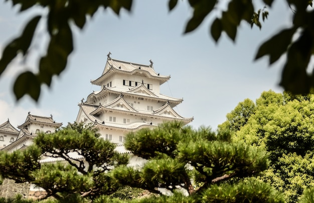 Colpo di messa a fuoco selettiva del castello bianco di himeji, himeji, giappone